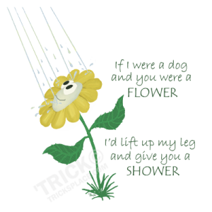 Flower_Shower-With-Words-SHOT-COLORONLY