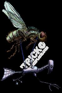 fly_flier-SHOT-COLOR