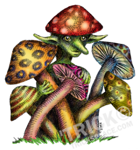 mushroom_elf-SHOT-COLOR